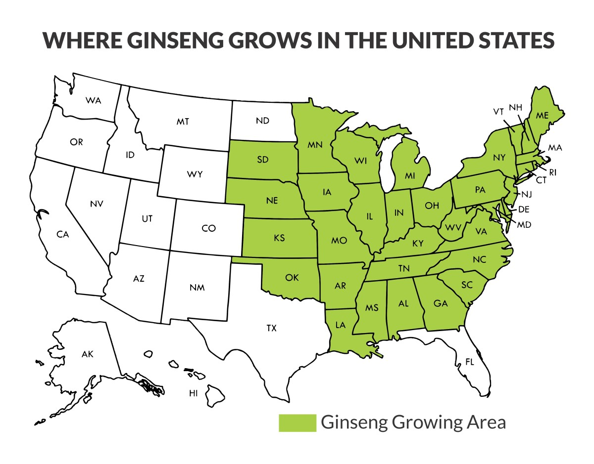 Ginseng In Illinois Map.How To Find And Sell American Wild Ginseng Owlcation