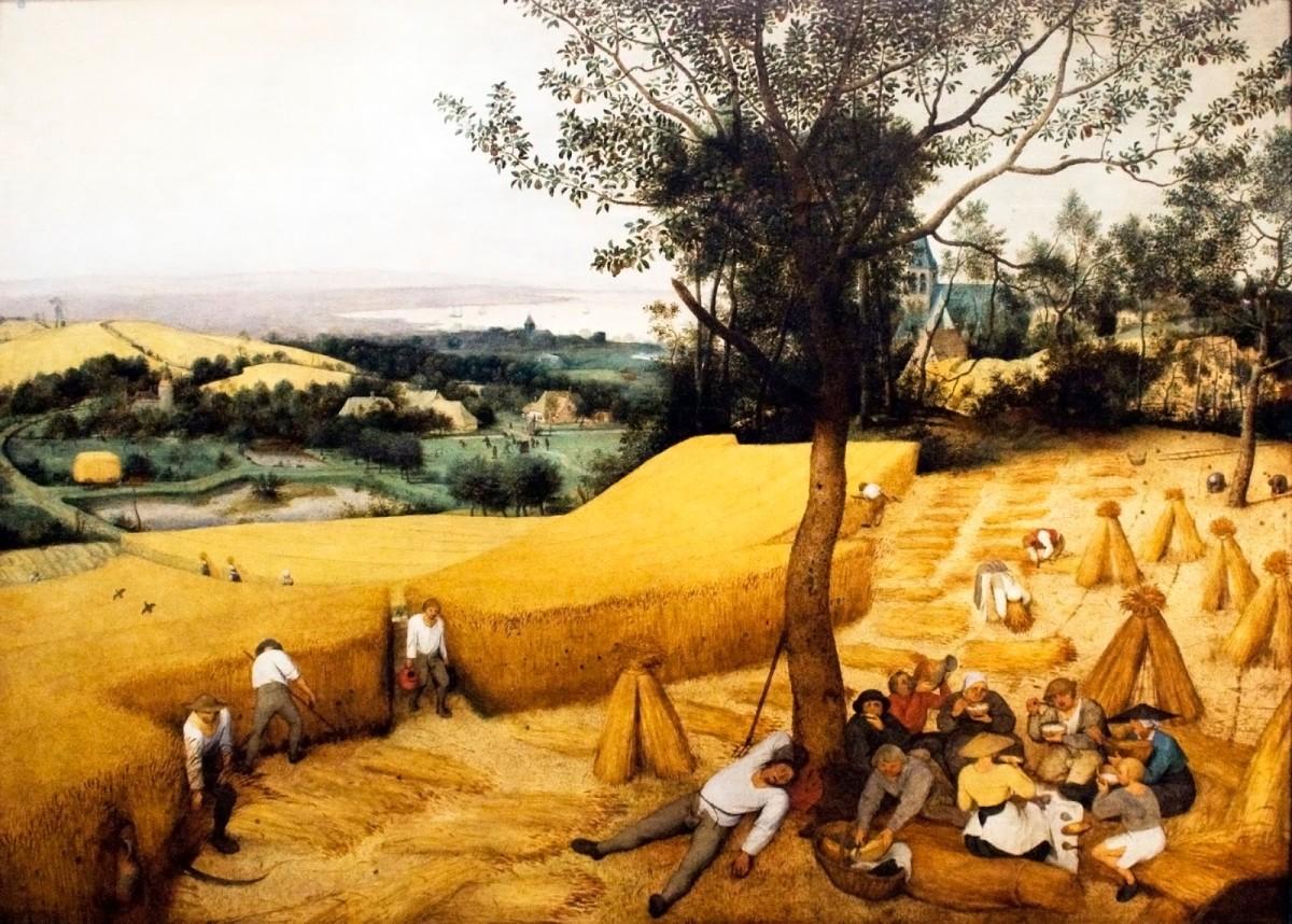 The Corn Harvest by Pieter Breugel the Elder