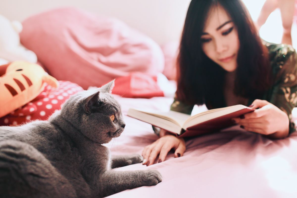 Woman Reading Book Near Cat
