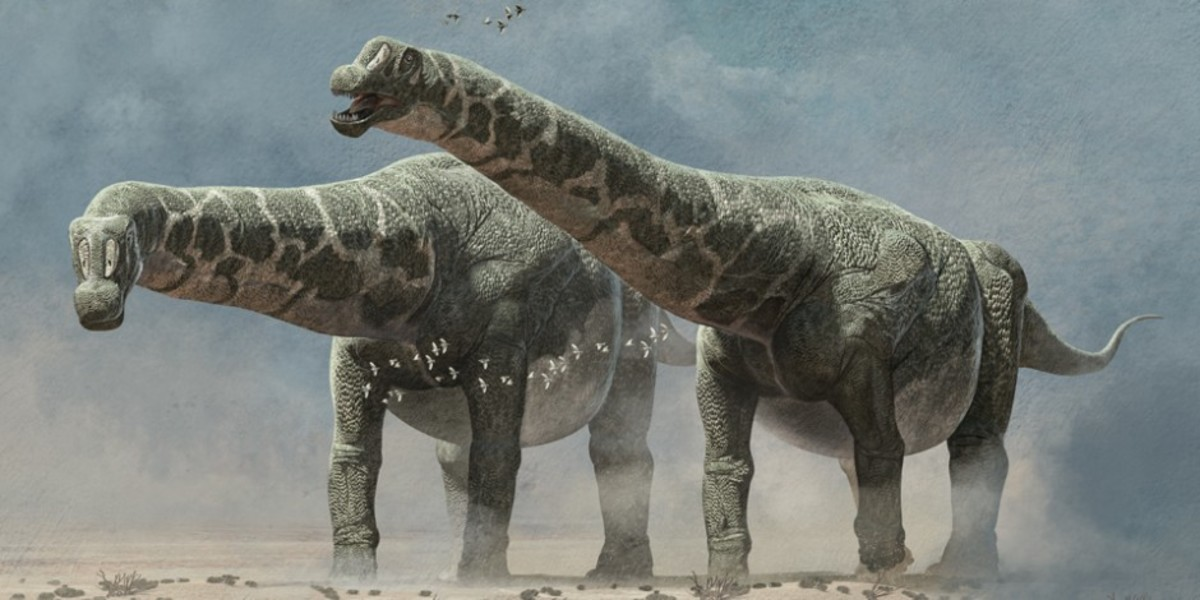 Early depiction of Patagotitan by Roman Garcia-Mora, 2014.