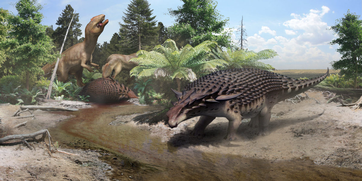 A scene with two Borealopelta -- one being eaten by carcharodontosaurs and the other drinking -- by Robert Nicholls.
