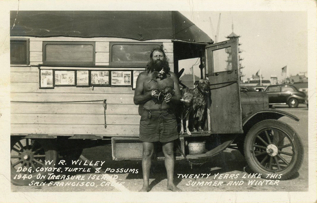 A 1940 photo of Willey at the Golden Gate International Exposition in San Francisco.  Shown with him are his pets - a possum, turtle, coyote and a dog.