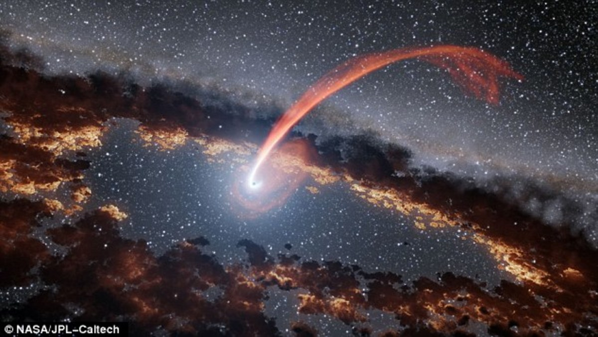 What is a Tidal Disruption Event Around a Black Hole?