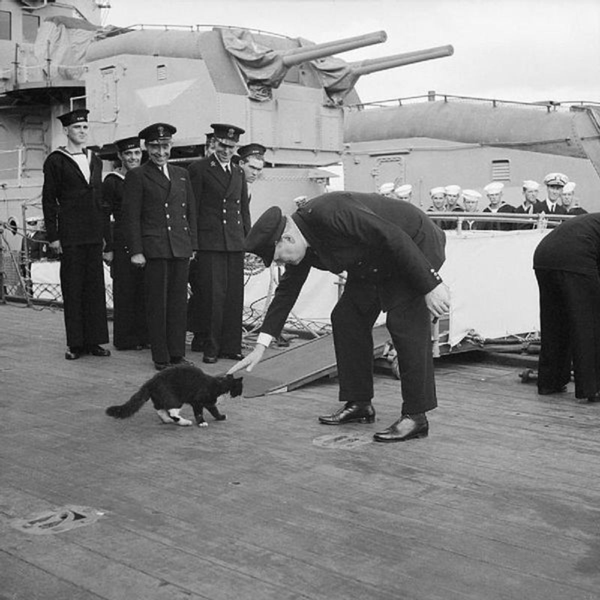 Blackie was the ship's cat aboard HMS Prince of Wales, which took Winston Churchill (seen here petting Blackie) to the Atlantic Conference of 1941. The crew changed Blackie's name to Churchill.