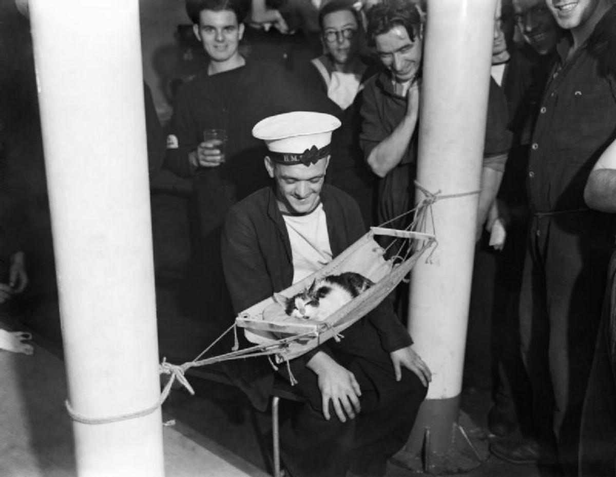 Convoy aboard HMS Hermione.