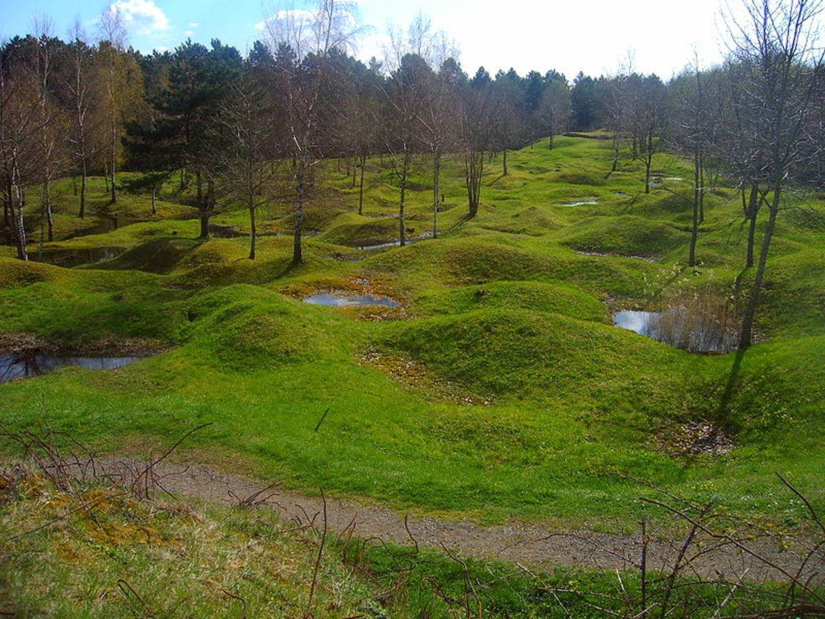 A Verdun battlefield still showing shell craters but hiding unexploded ordnance (UXO).