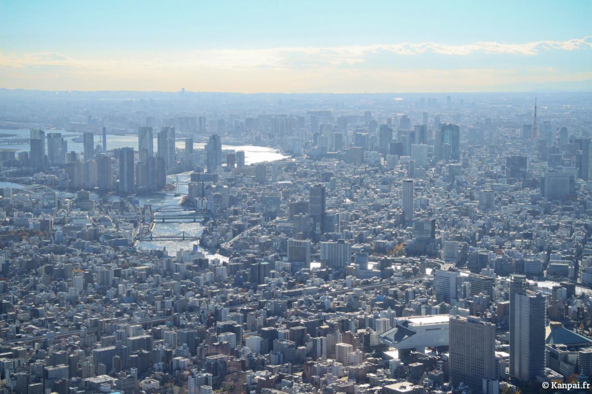 Tokyo: A rather tall city.