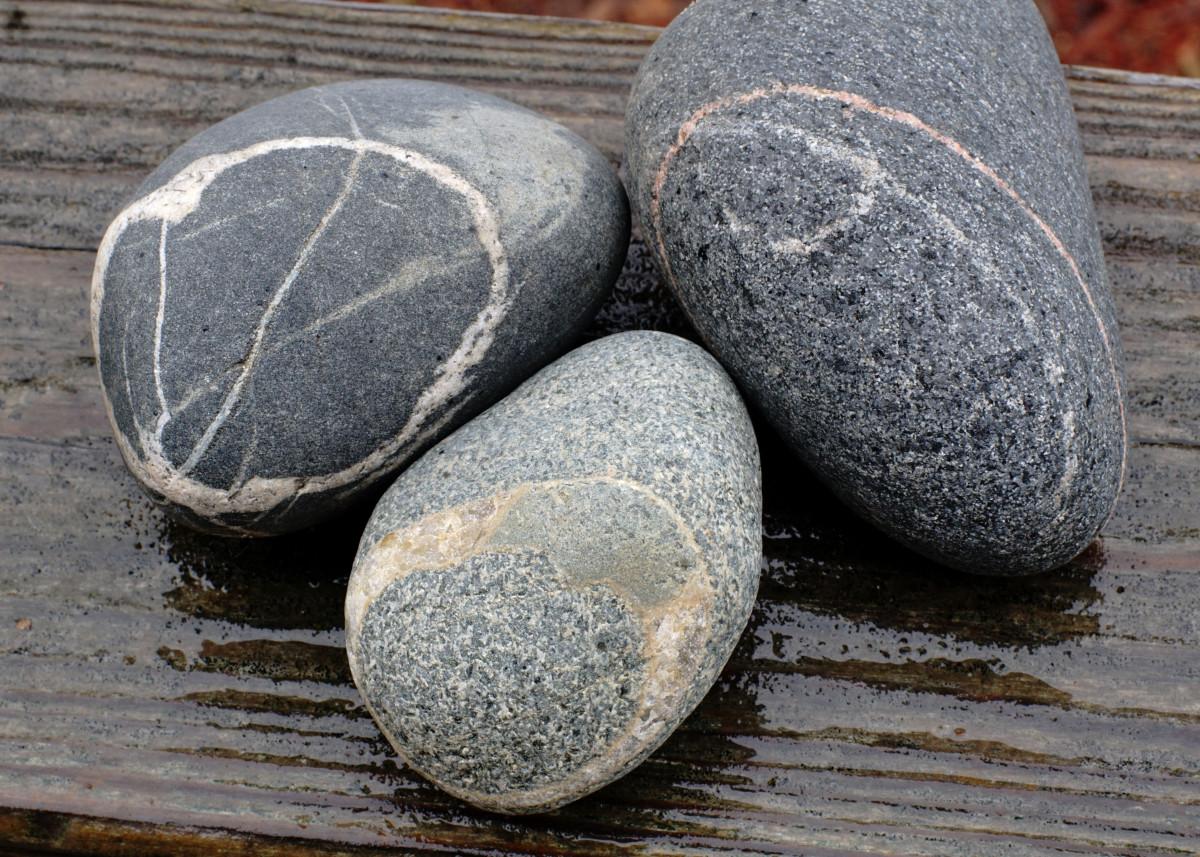 Quartz Veins In Various Host Rocks- Lake Michigan Beach Stones