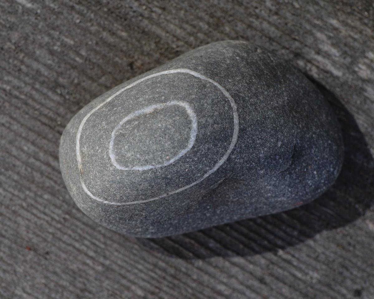 Quartz Veins In Basalt Rock - Lake Michigan Beach Stone