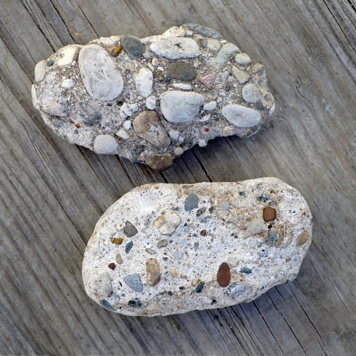 "Conglomerates ""Pudding Stones"" - Lake Michigan Beach Stones ""manmade"""