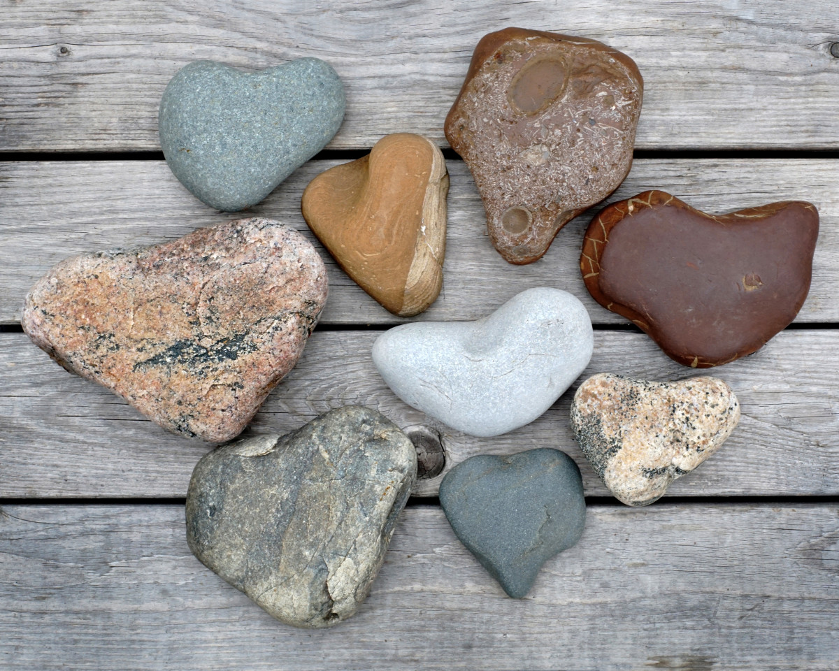 Heart Shaped Stones  - Lake Michigan Beach Stones