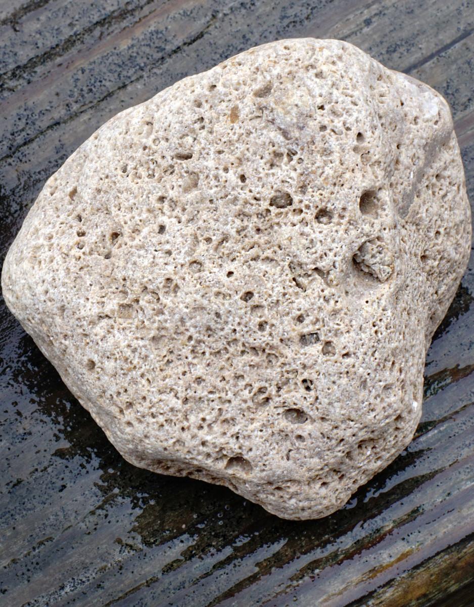 Rhyolite Pumice - Lake Michigan Beach Stones
