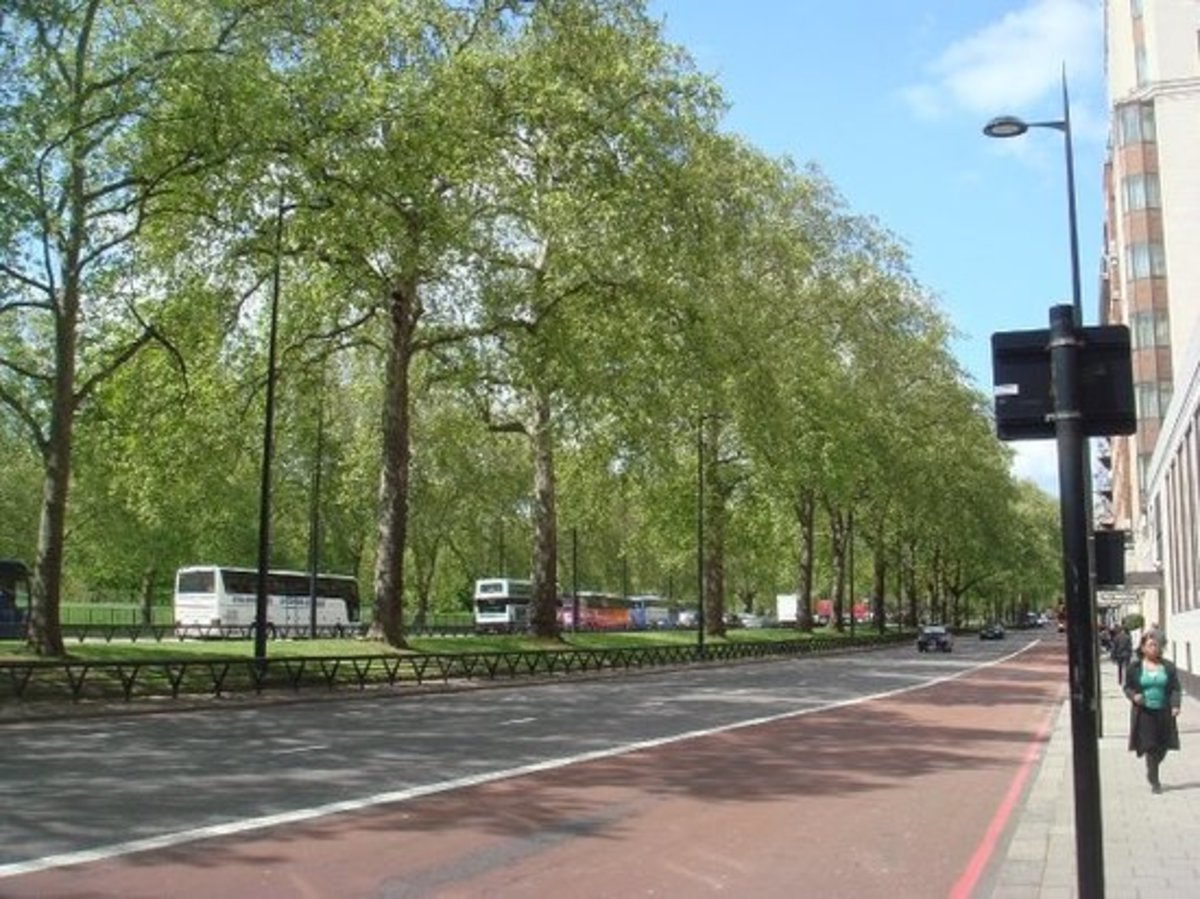 Hyde Park on the left, posh hotels on the right on Park Lane