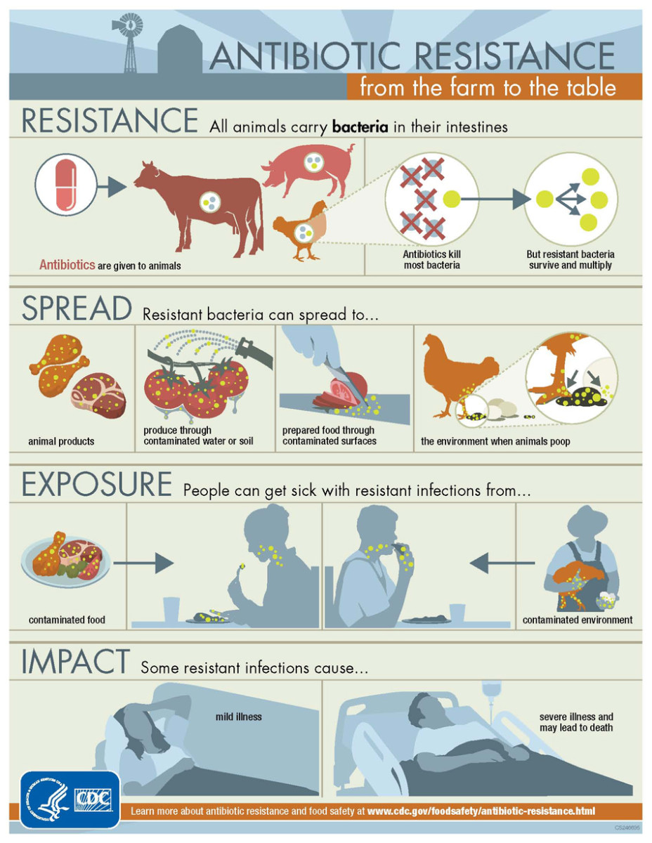 The CDC explains how antibiotic resistance can effect humans.