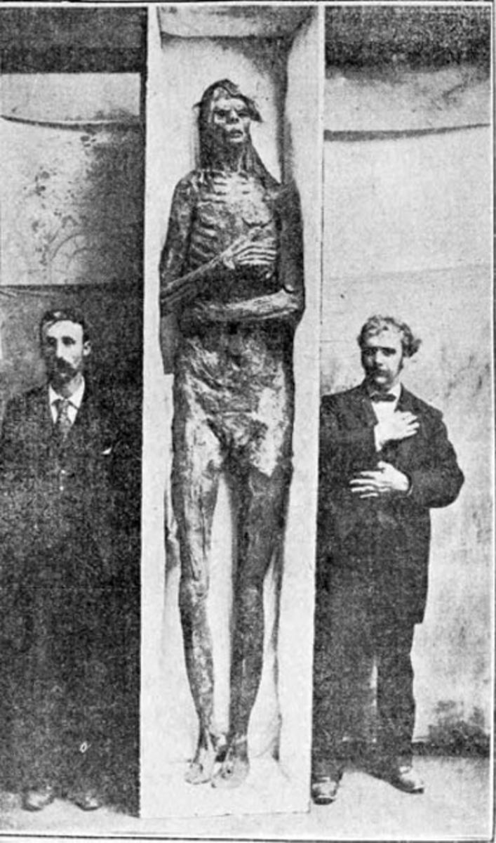 Although later claimed to have been a hoax, this giant/nephilim remains were found in San Diego. The Smithsonian bought it in 1895.