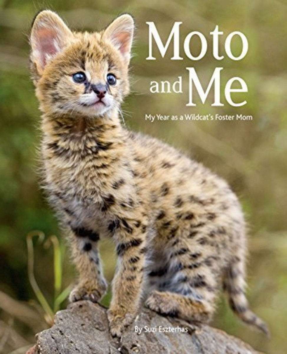 Moto and Me by Suzi Eszterhas