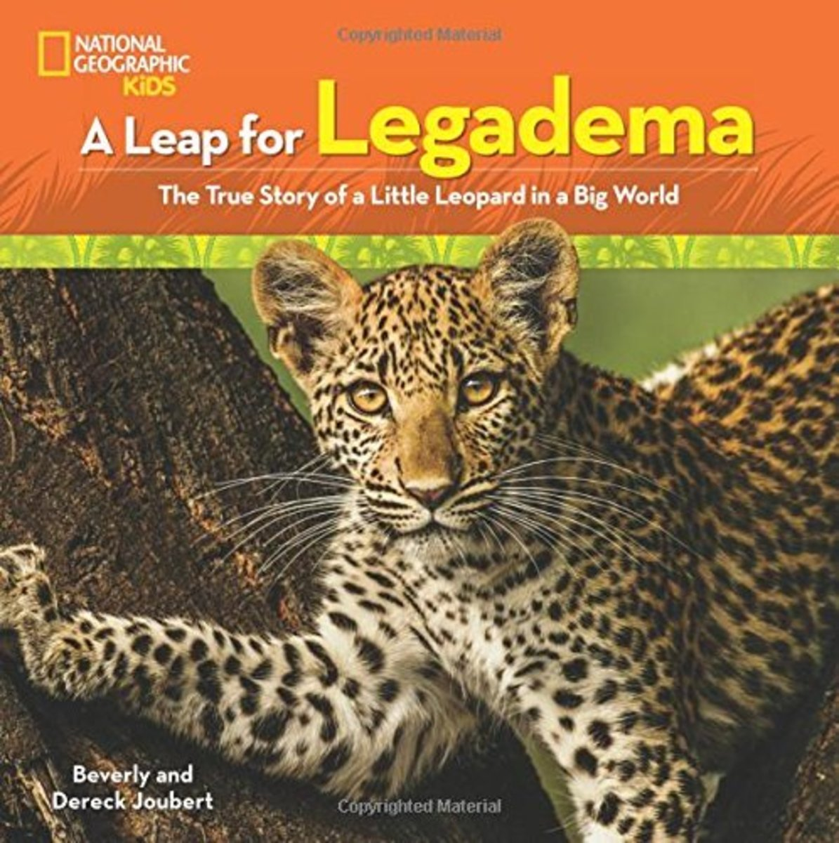 A Leap for Legadema by Beverly and Dereck Joubert