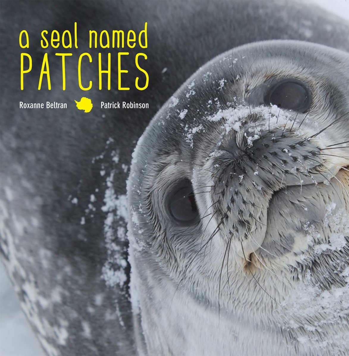 A Seal Named Patches by Roxanne Beltran