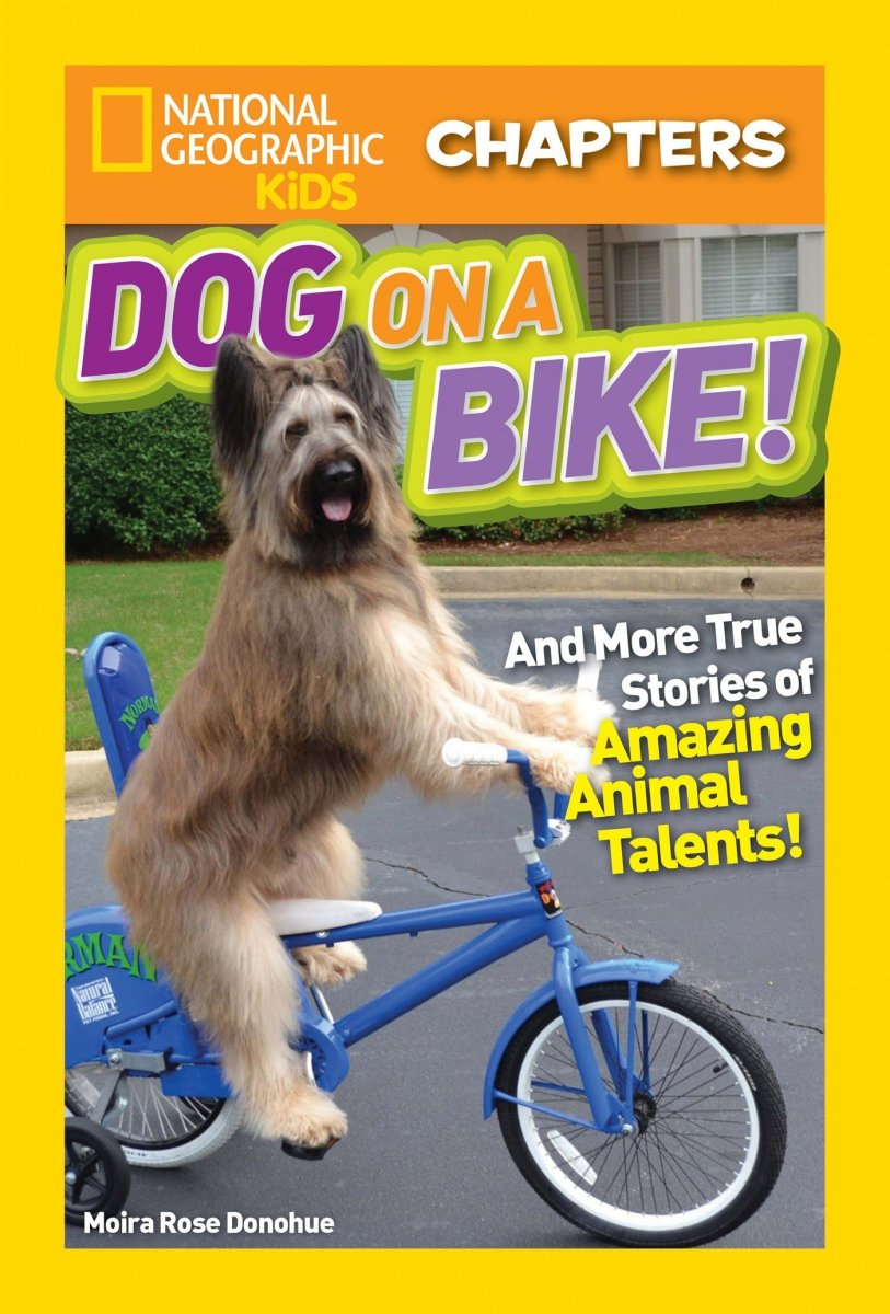 Dog On a Bike  by Moira Rose Donohue