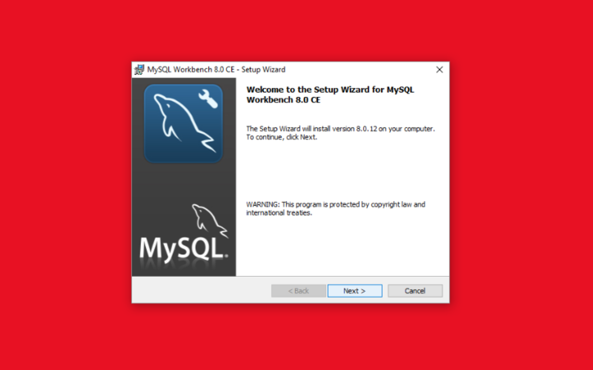 Running the MSI Installer will open a setup wizard window.
