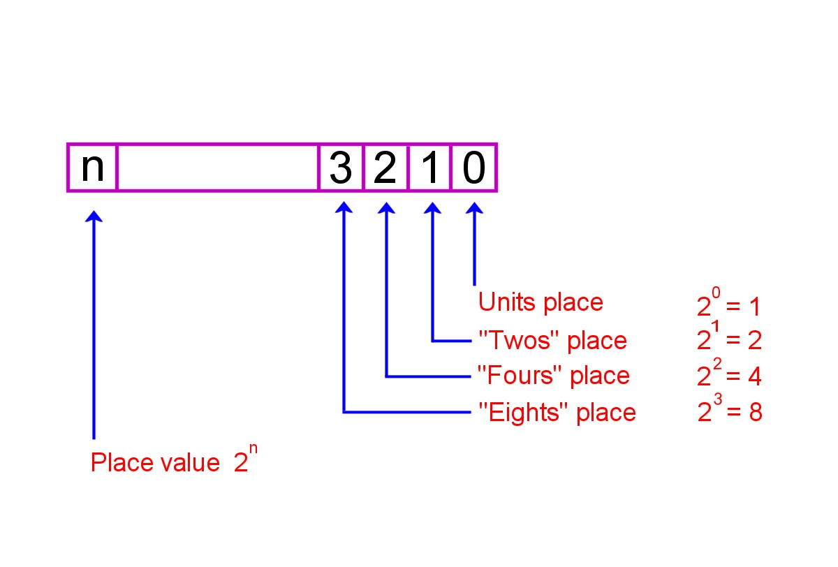 Placeholder value in the binary number system
