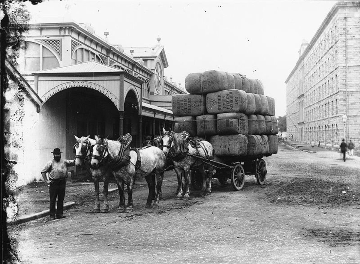 Carting wool bales, Australia, 1900.