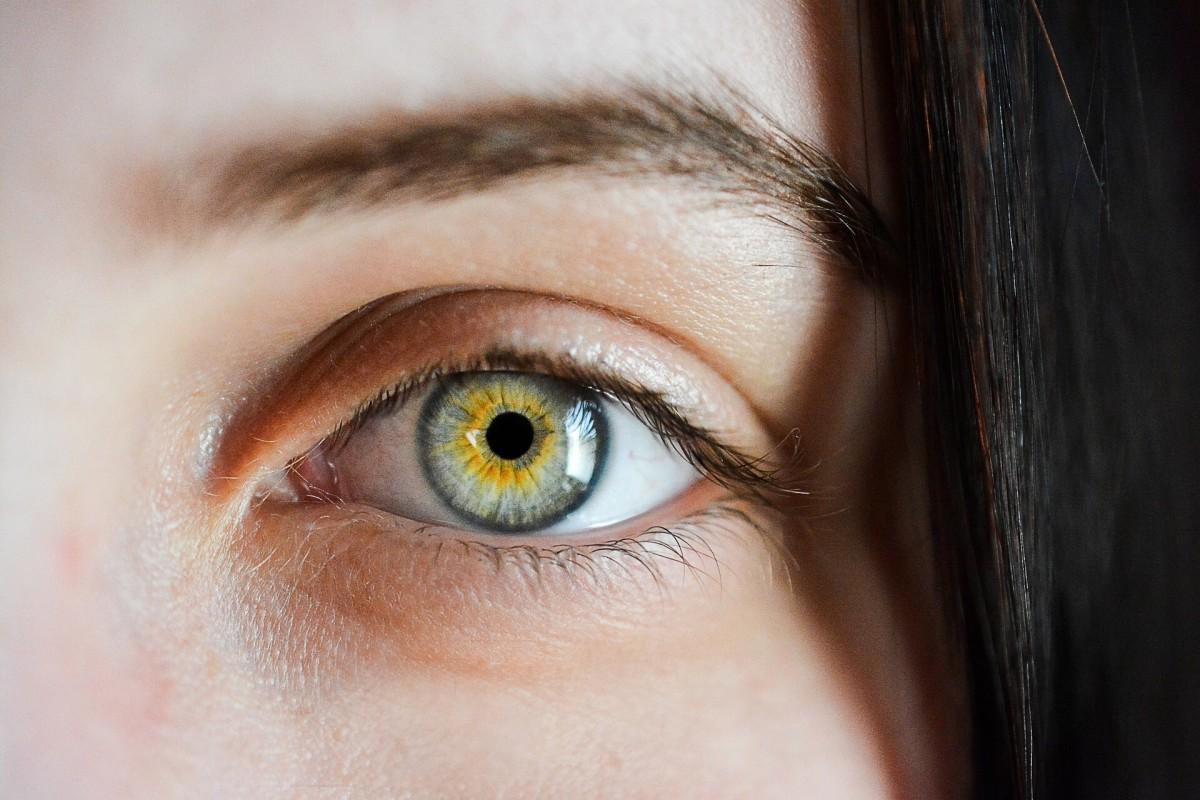 The eye as seen through a healthy and transparent cornea