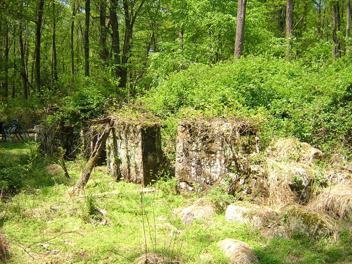 Ruins at Yellow Springs
