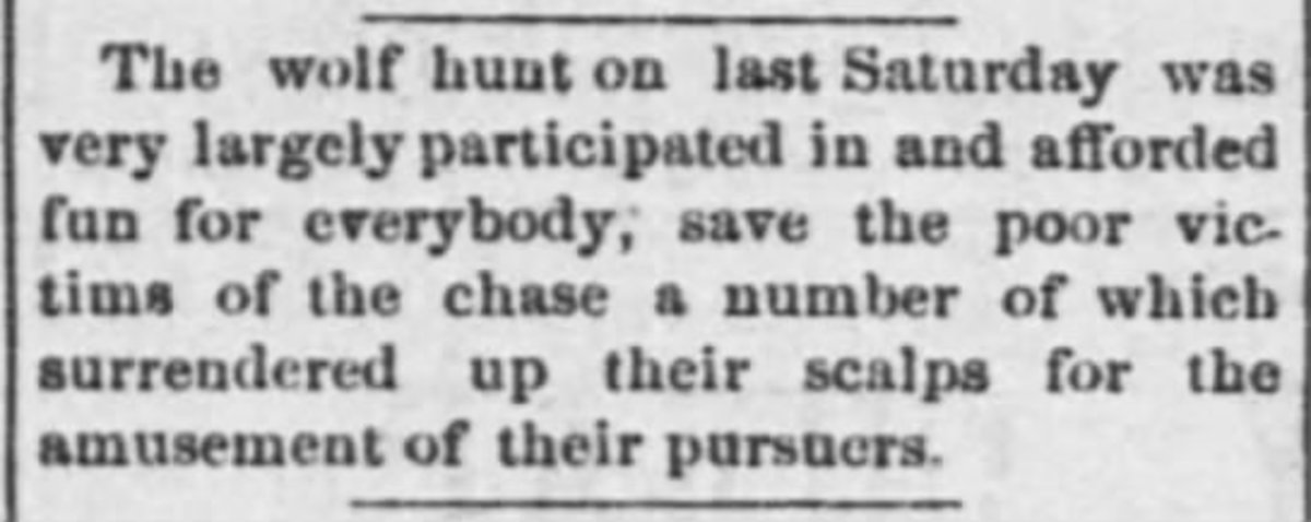 1881 Emporia Kansas wolf hunt on Friday, February 4, 1881. Page 3 · The Weekly News-Democrat (Emporia, Kansas, United States of America)
