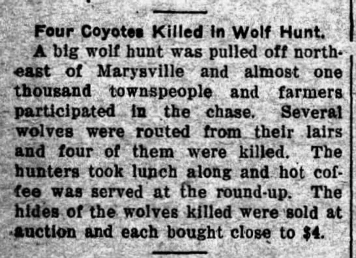 The Dexter Tribune, January 16, 1913. Page 3
