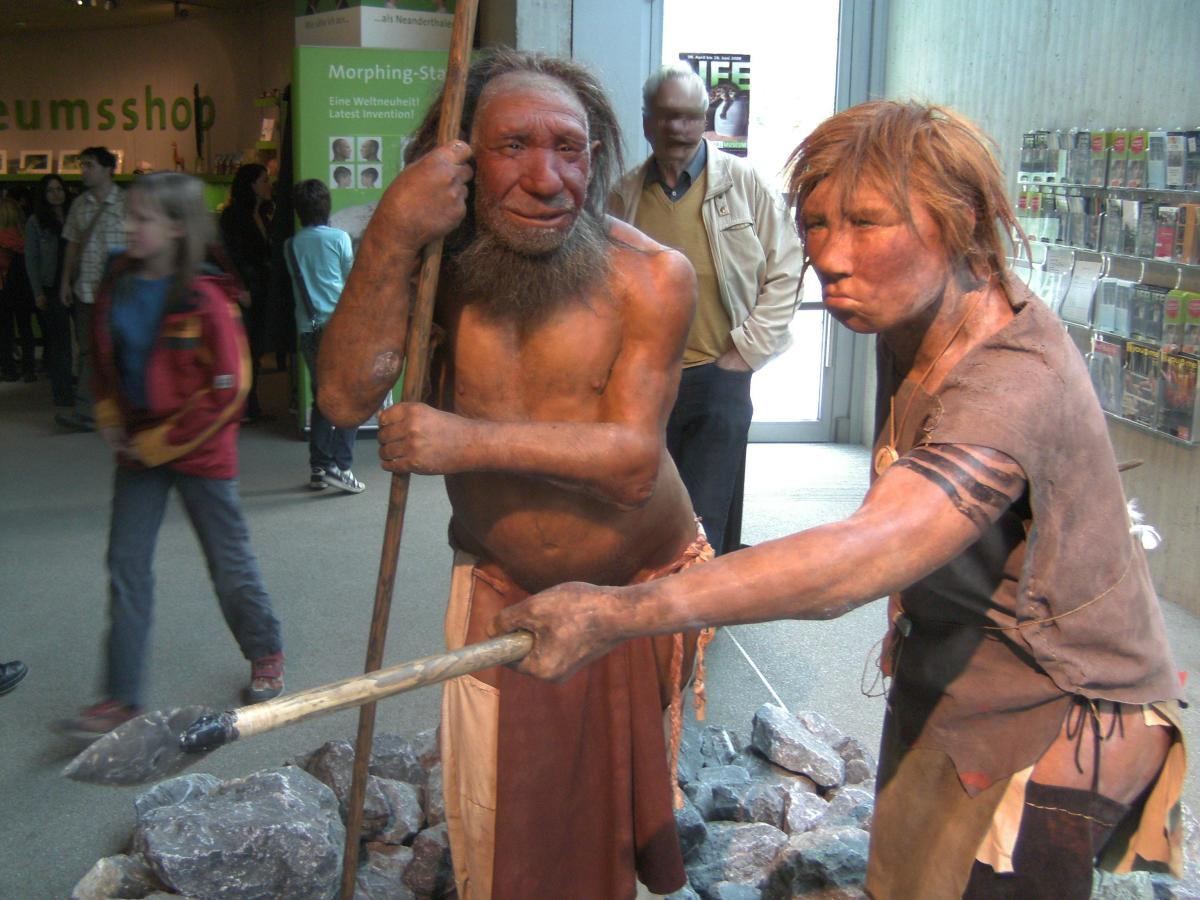 Neanderthals had a wide range of hair and skin tone. While an urban legend often states red hair is from Neanderthals, the modern human mutation for red hair is not observed in the Neanderthal genome.