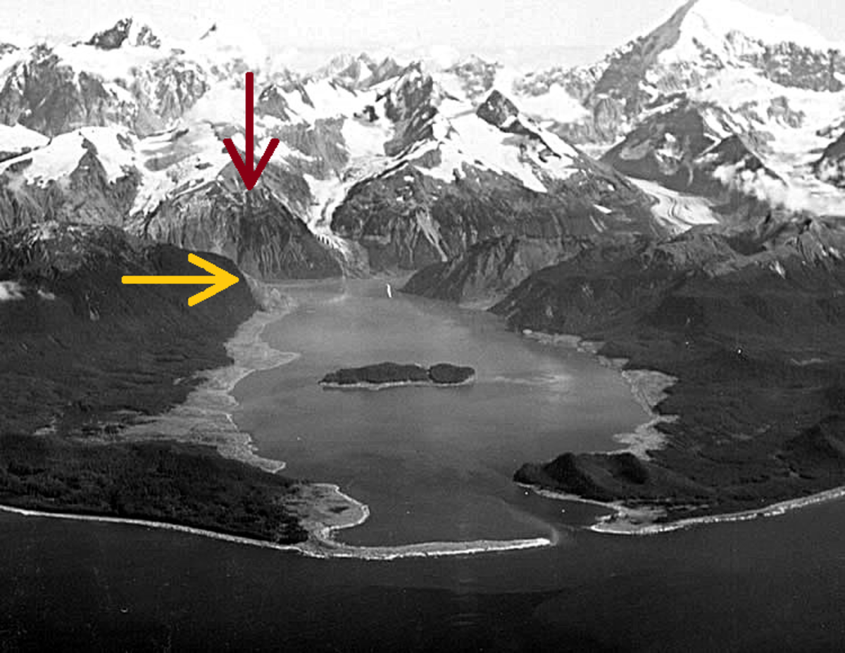This photo was just taken a few weeks after the Lituya Bay megatsunami struck. The red arrow demonstrates the starting point of the landslide and the yellow arrow indicates the height on land where the vegetation was stripped.