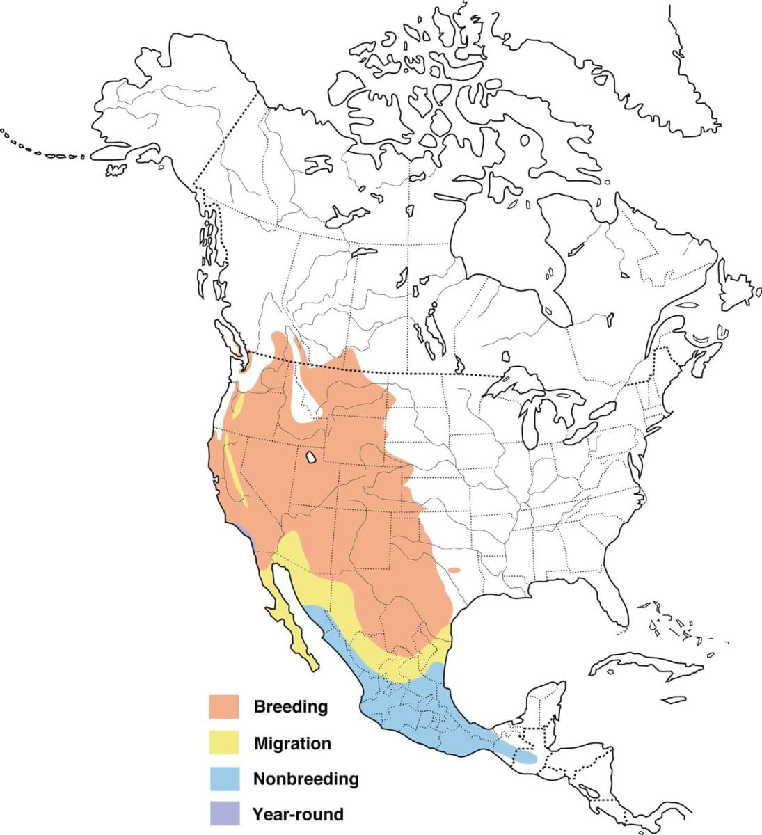 Map showing the range of the Bullock's oriole.
