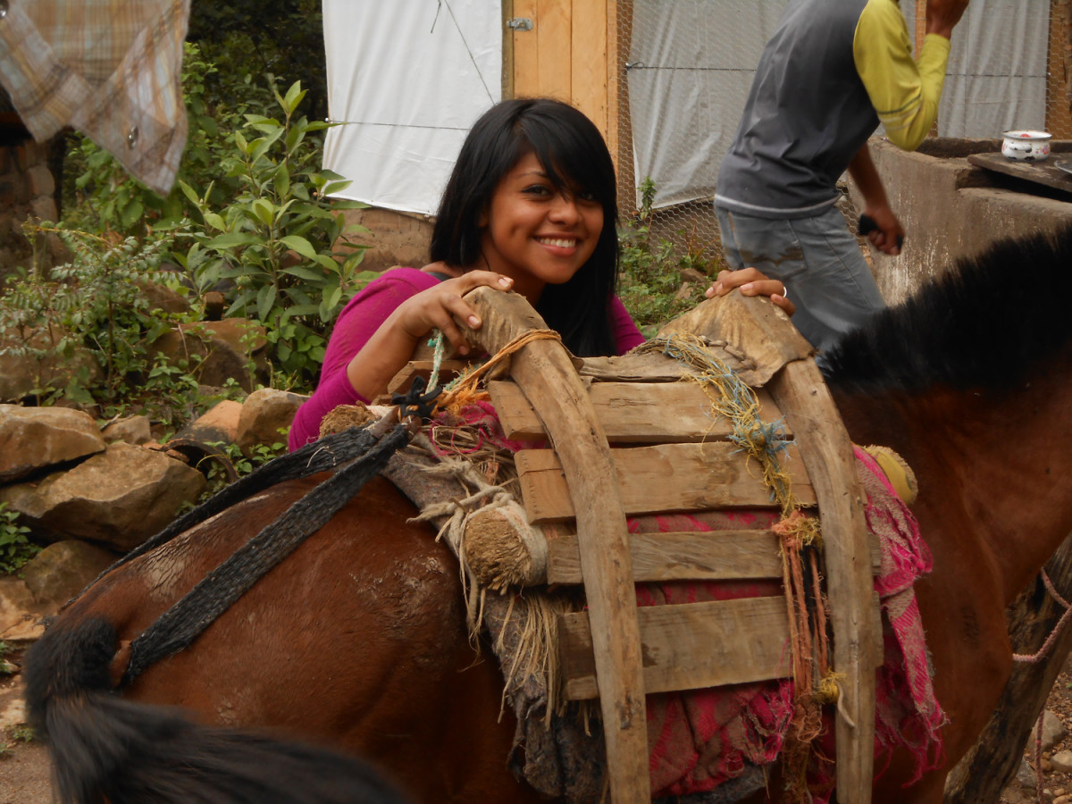 Girl and mule with typical pack saddle.