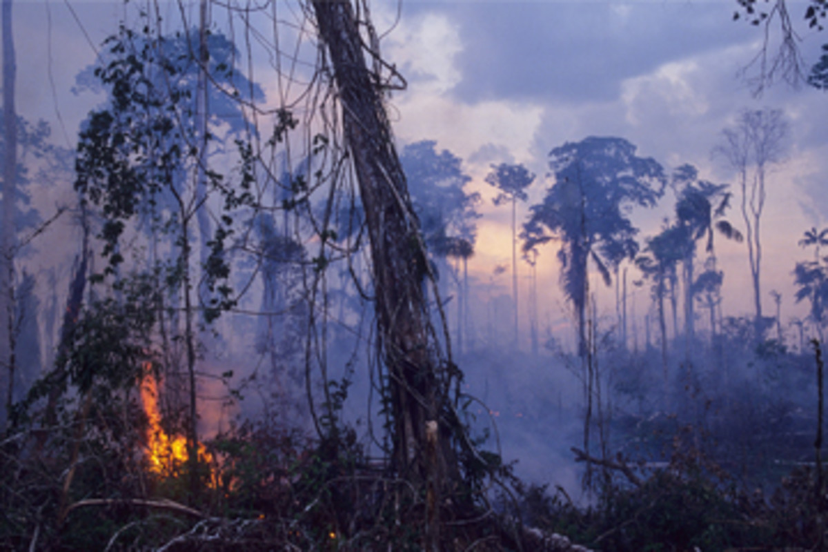 Slash and burn agriculture is highly destructive, potentially on a large scale due to spreading forest fires.
