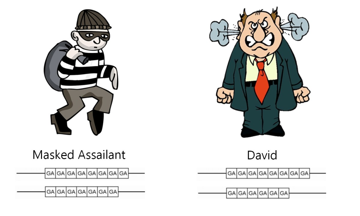 DNA Profiles of the Masked Assailant and David