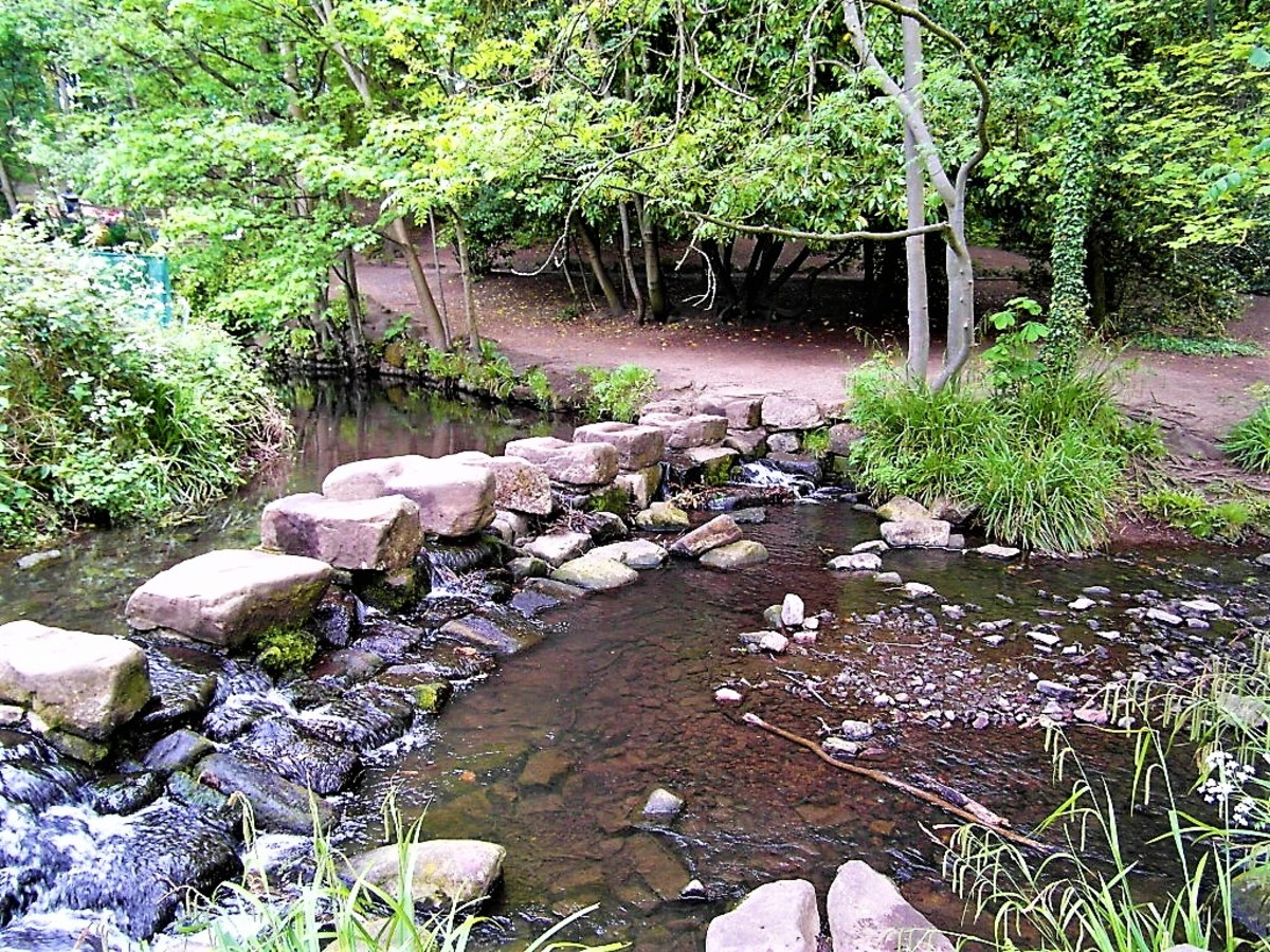 Stepping stones across the stream in Endcliffe Park.