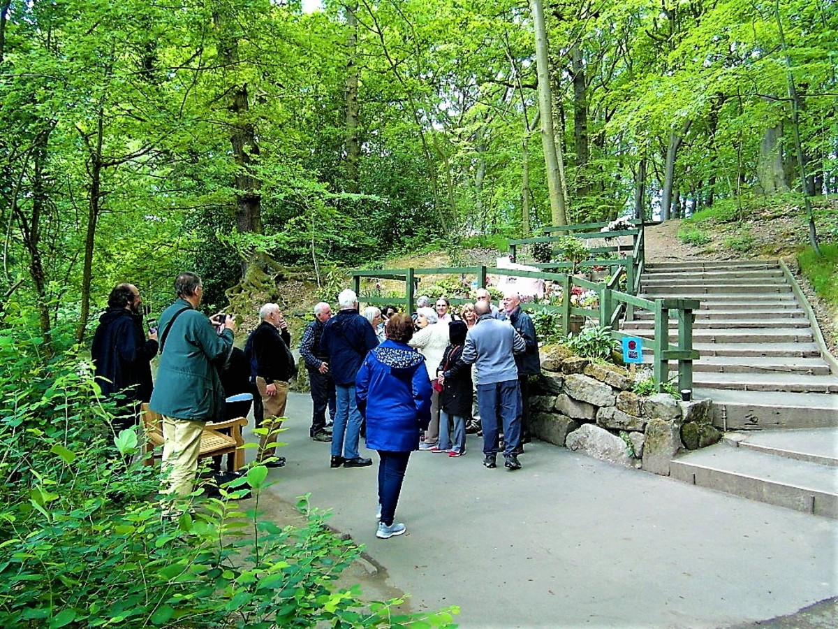 The woodland setting of the memorial.