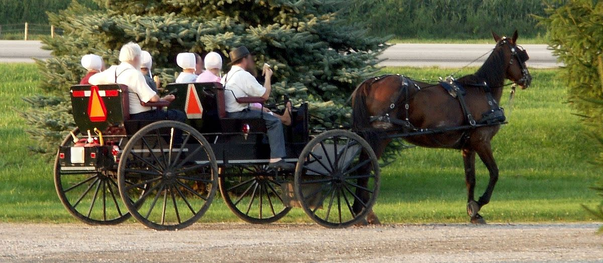 The Amish, a religion noted for its emphasis on forgiveness, also practice shunning.