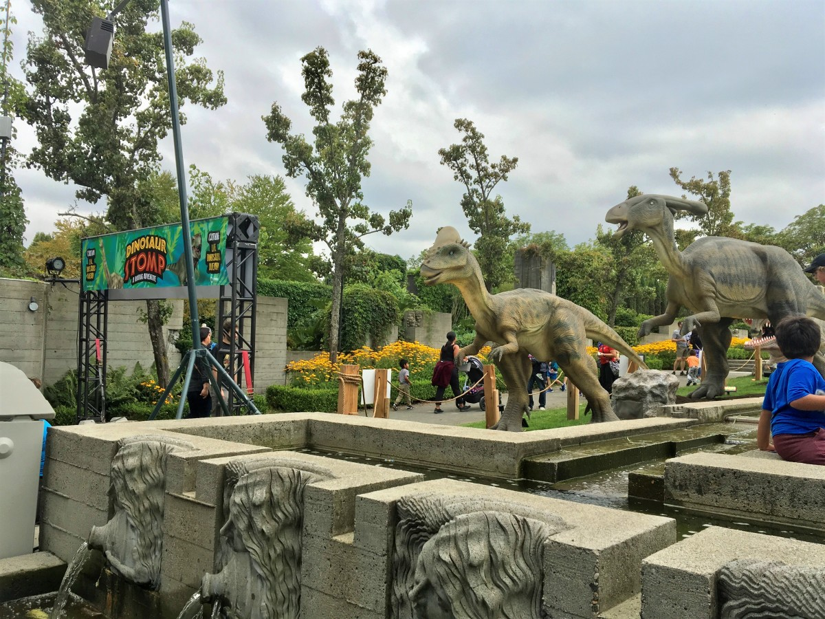 Pachycephalosaurus (in the front) and Parasaurolophus at the Dinosaur Stomp
