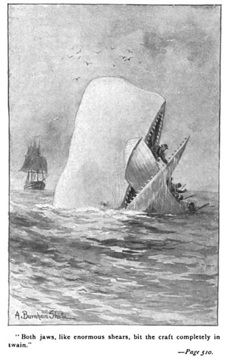 The only crime committed by Moby Dick was to lick Ahab in a fair fight, this while the crusty captain was trying to shove a harpoon up his blowhole