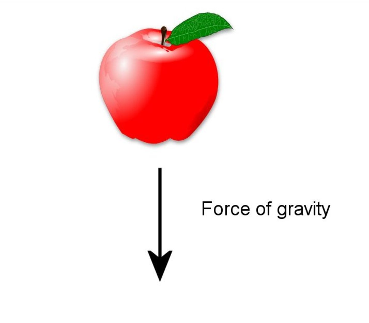 Gravity exerts a force on everything.
