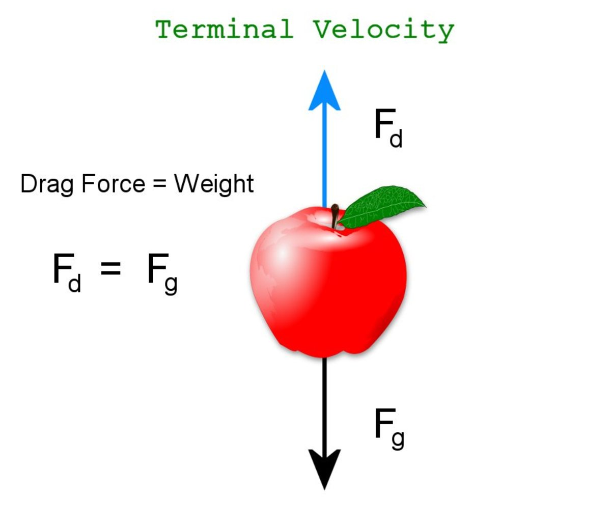 As velocity increases, the drag force acting upwards eventually equals the force of gravity acting downwards, the net force becomes zero and an object no longer accelerates. It has reached terminal velocity.