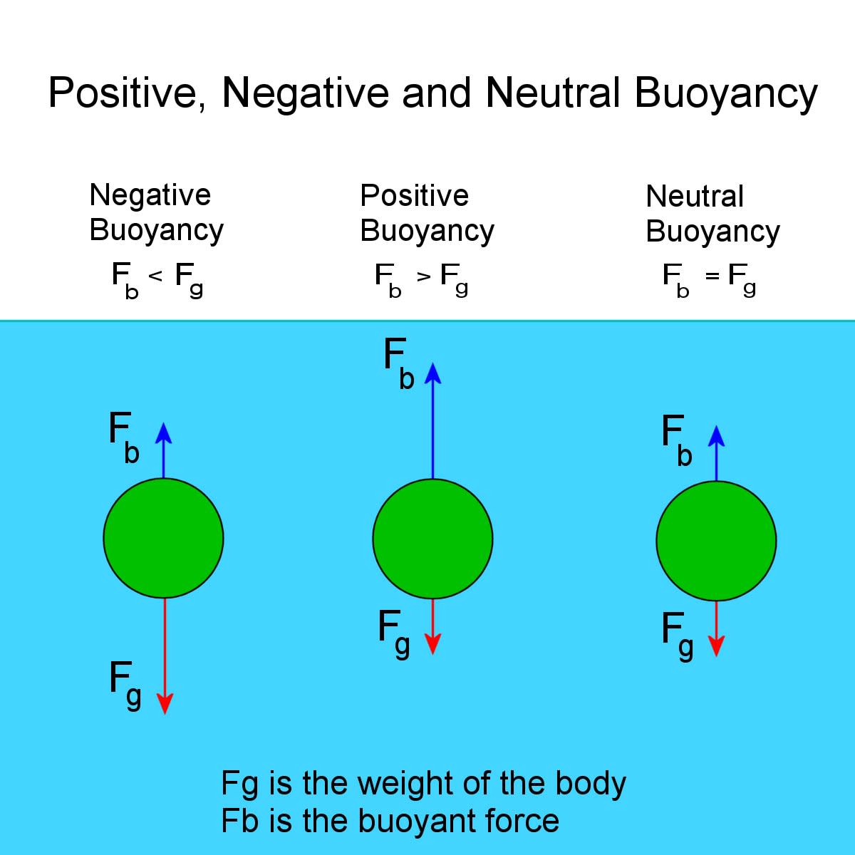 Negative, neutral and positive buoyancy