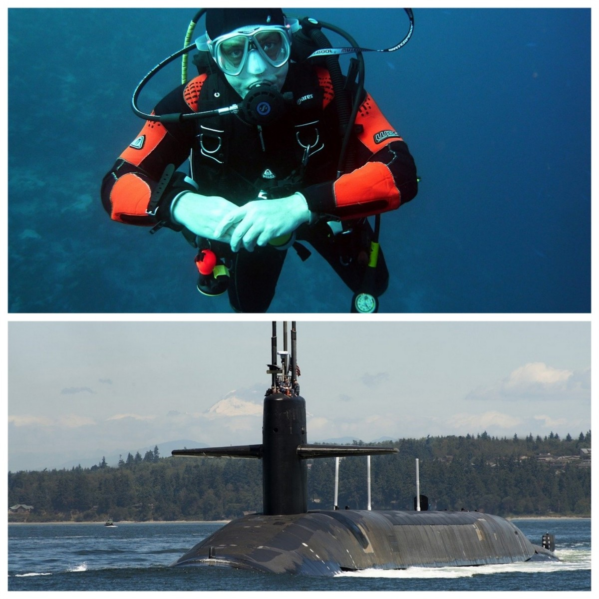 A scuba diver needs to have neutral buoyancy. A submarine needs to have neutral, positive and negative buoyancy.