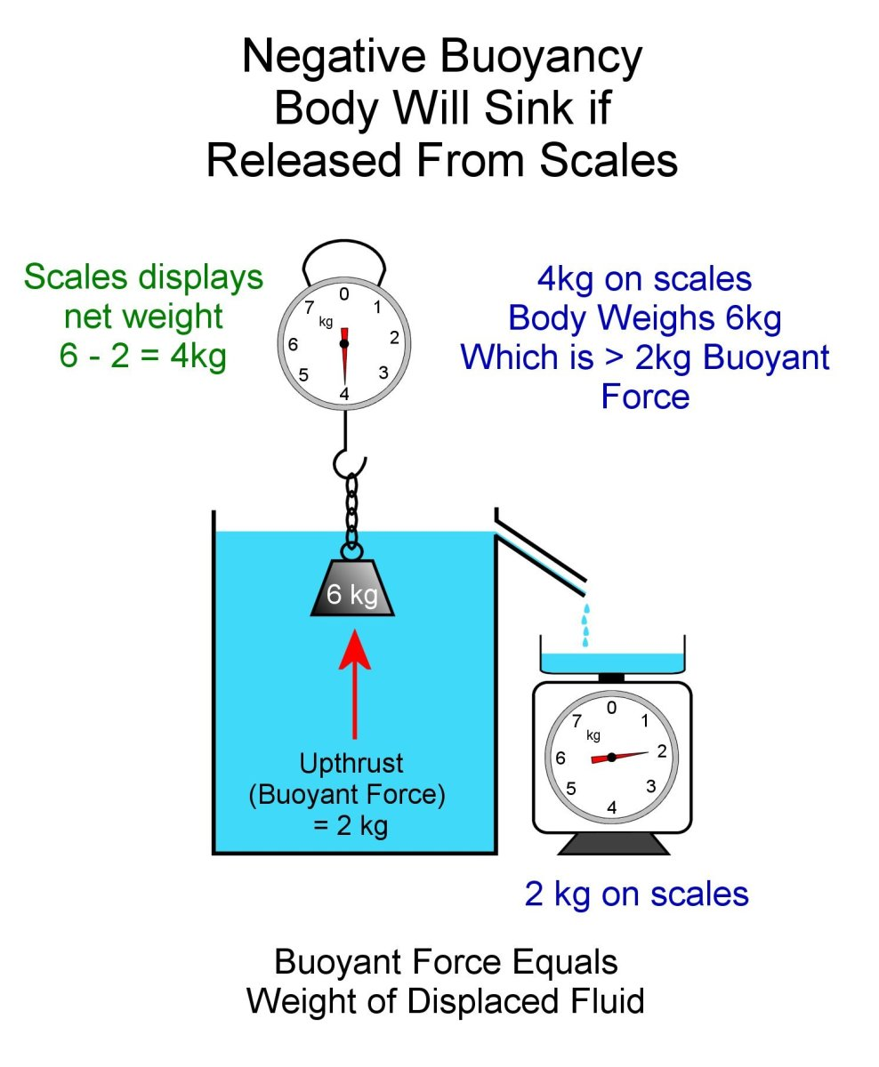 Negative buoyancy. Buoyant force is less than the weight of the submerged body.