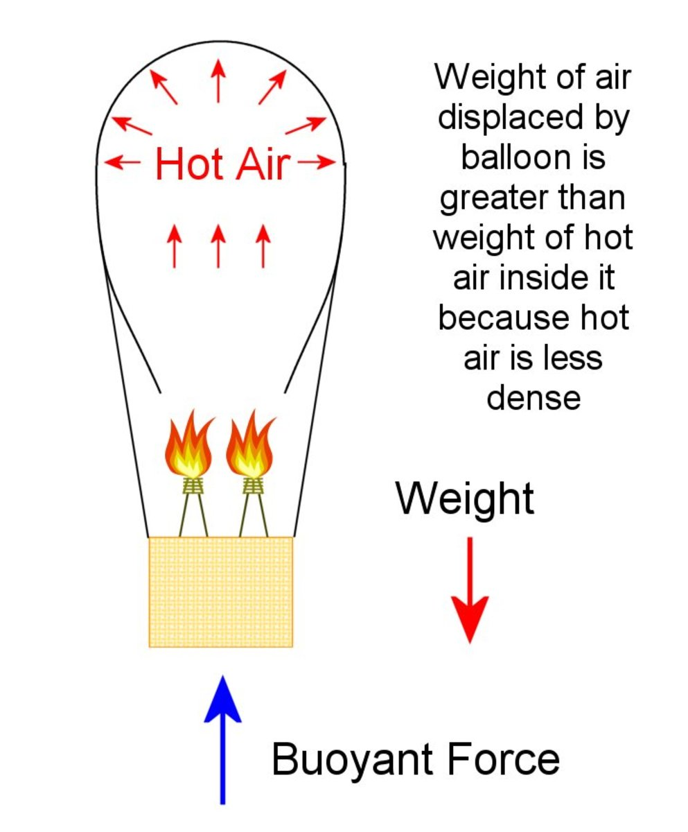 The weight of displaced air (which produces the buoyant force) is greater than the weight of the balloon's skin, basket, burners and less dense hot air inside it and this gives it enough lift to rise.