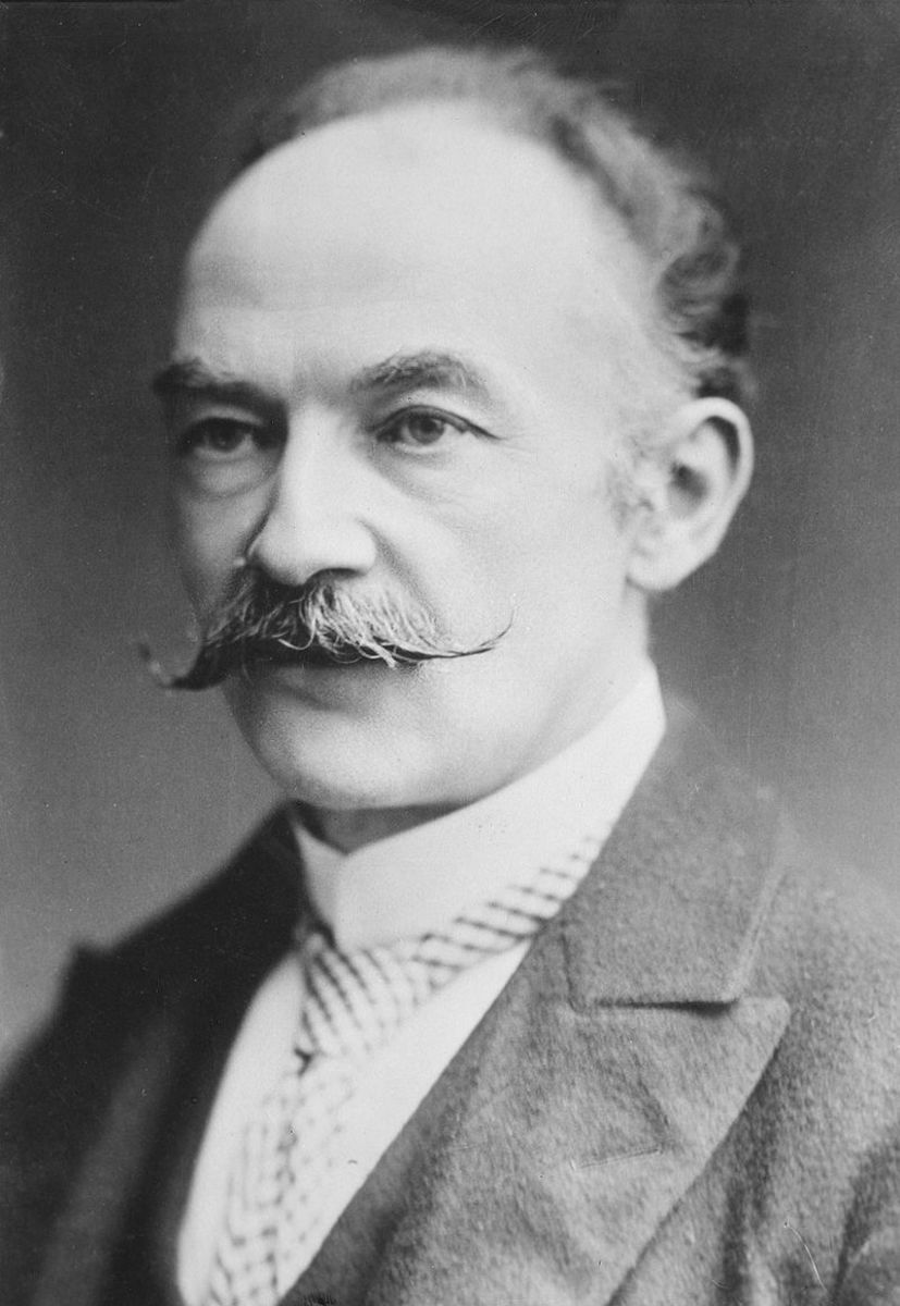 Thomas Hardy, author of Jude The Obscure, sporting a much more dapper moustache than the walrus-like lower lip bristles grown by his later reviewers.