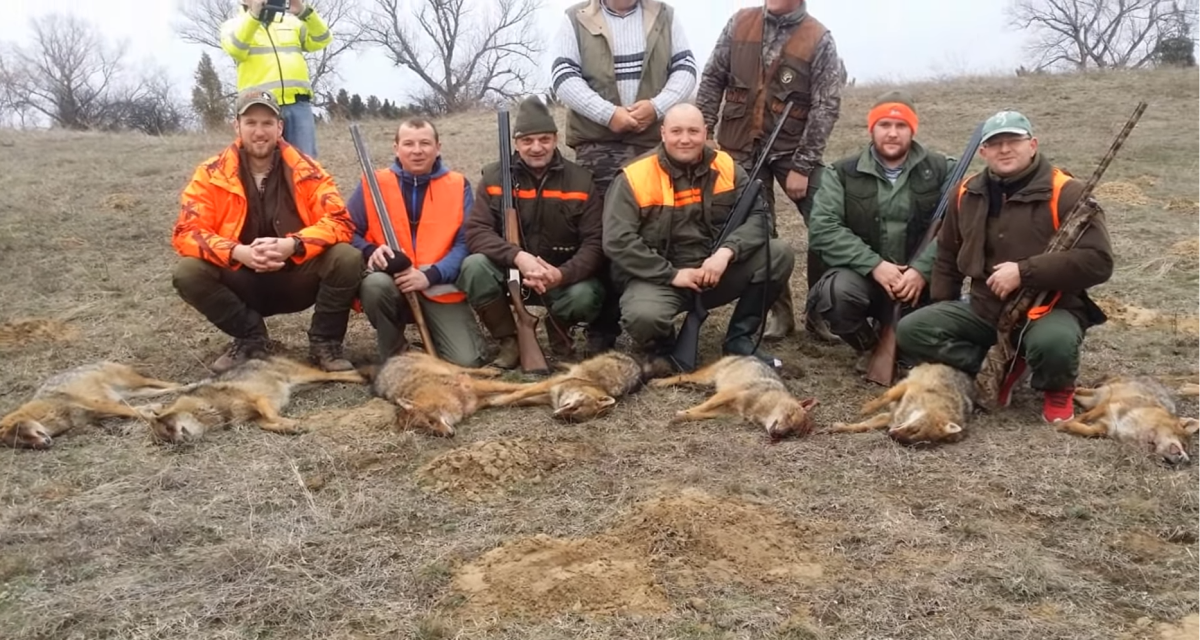 Hunting is seen as a male sport, and it grants status to those who participate - regardless of the fact that many of these animals are nearing extinction.