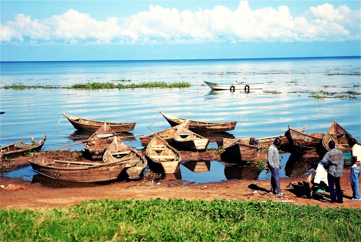 Fishing boats sit idle in Uganda because the inshore area has been over-fished.